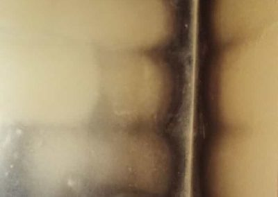 grzyb na ścianie